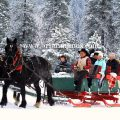 sleigh ride icicle outfitters National Fish hatchery Leavenworth Washington