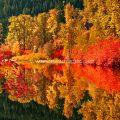 Nason Creek, fall at Ray Rock Springs in the Cascade range Leavenworth WA