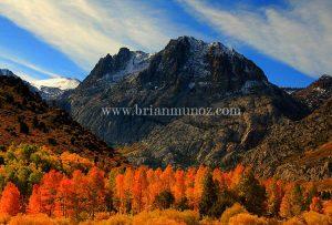 Fall color June Lake Loop road Eastern Sierra Nevada California