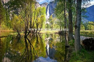 Yosemite falls reflection Merced River Yosemite National Park California